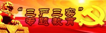 """""""三严三实""""专题教育"""